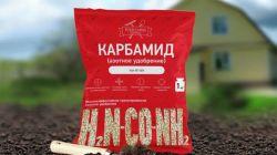 Мочевина: применение удобрения на огороде