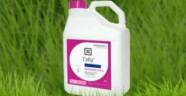 Препарат против колорадского жука Табу: как применять