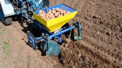 Принципы и способы посадки картофеля мотоблоком