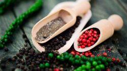 Ароматный южный гость — в вашем саду: встречайте душистый перец