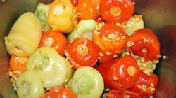 Лучшие рецепты перца, фаршированного овощами