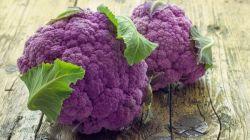 Выращивание фиолетовой цветной капусты