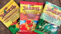 Как пользоваться препаратом Завязь для томатов