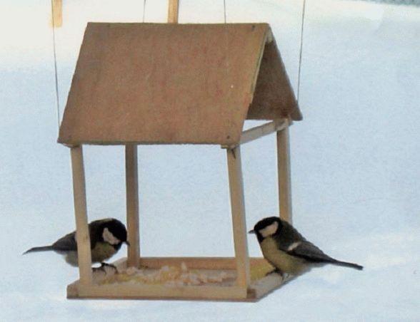 кормушка с птицами на снегу