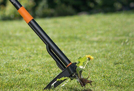 грабли для удаления корней