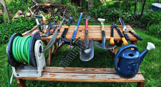 Инструмент для начинающего садовода