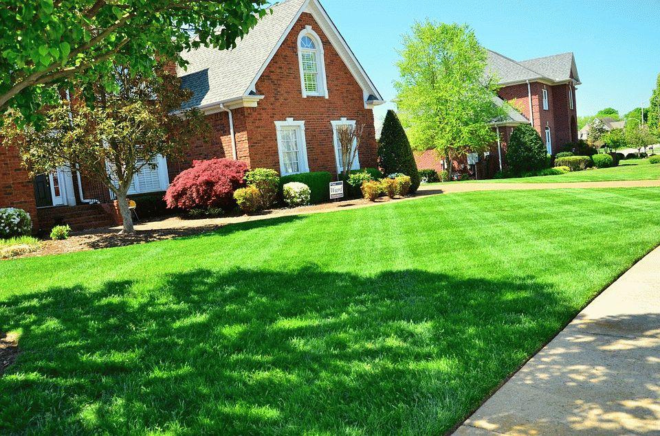 красивый газон возле дома