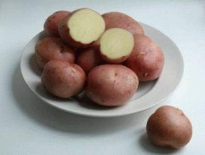 Плюсы и минусы картофеля Романо