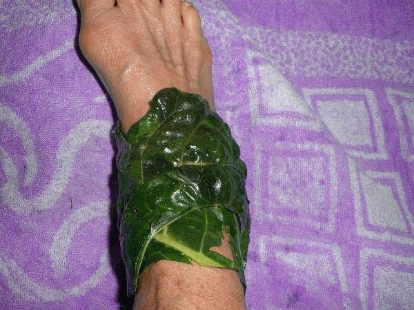 повязка из листа хрена