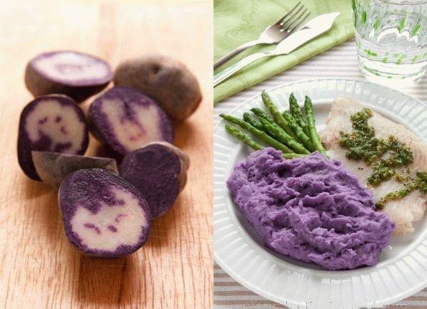фиолетовое пюре