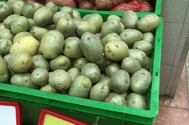 зеленый картофель