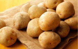 Описание картофеля сорта Лилея