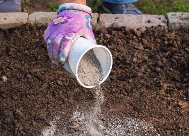 внесение в почву золы