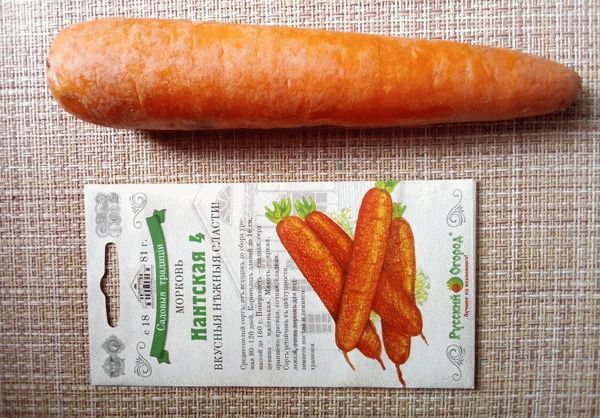 Морковь Нантская 4