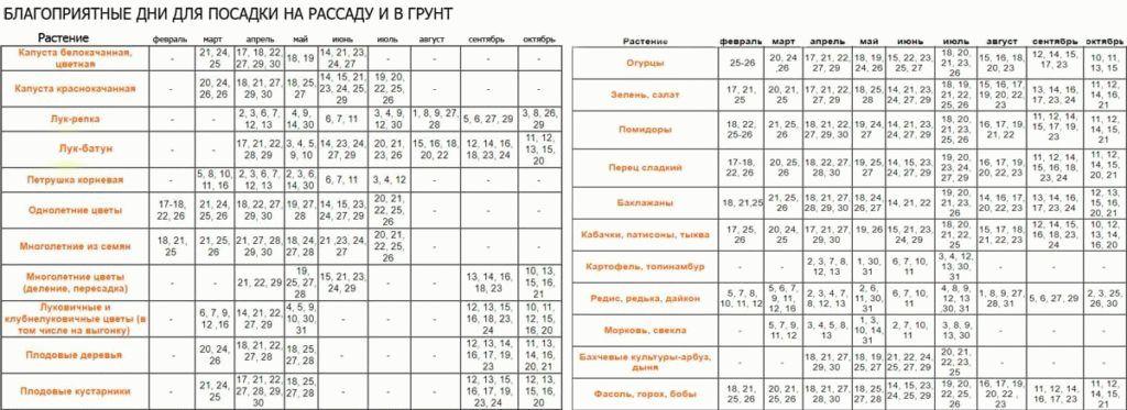 Благоприятные дни для посадки таблица
