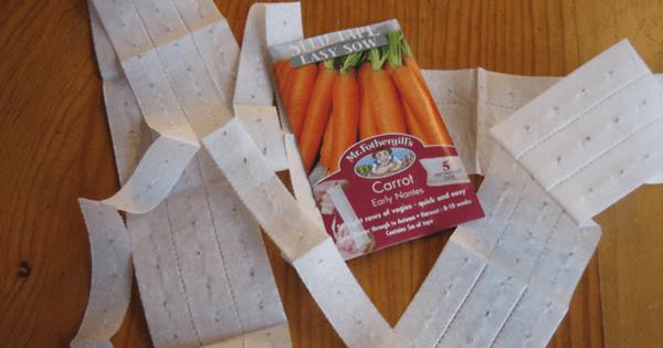 Наклейка семян моркови на бумагу