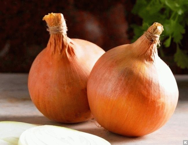 луковицы на столе