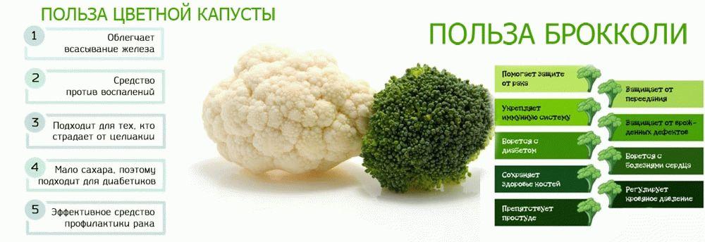 польза брокколи и цветной капусты