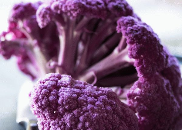Соцветия фиолетовой цветной капусты