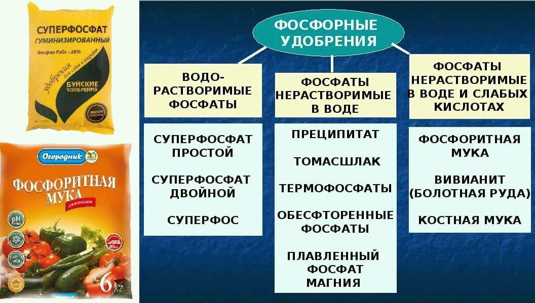 классификация фосфатных удобрений