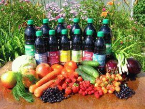 Использование гуминовых удобрений для растений