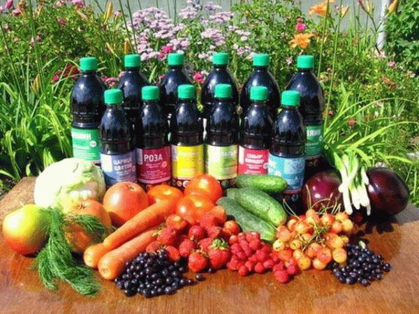 удобрения и урожай