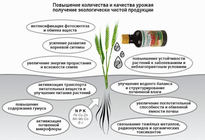 польза гуминовых удобрений