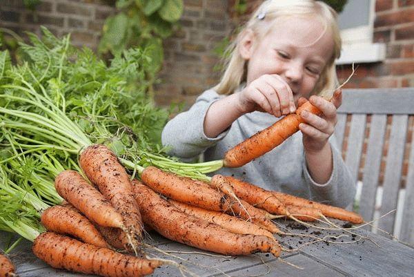 девочка чистит морковь