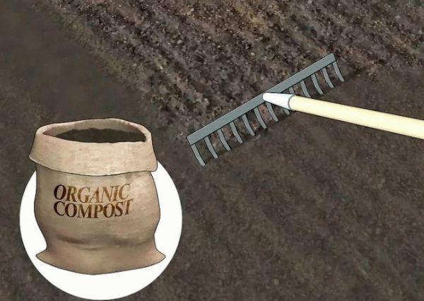 грабли и удобрение для почвы