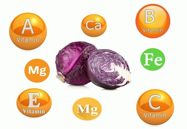 витамины в капусте