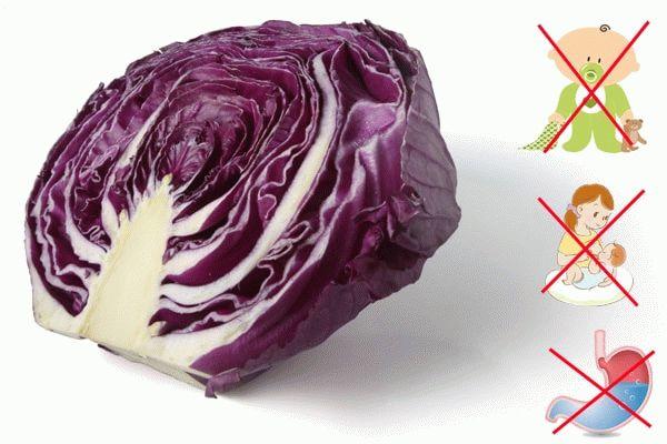 противопоказания для краснокочанной капусты