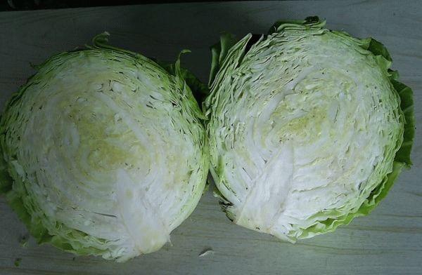 разрезанный вилок капусты