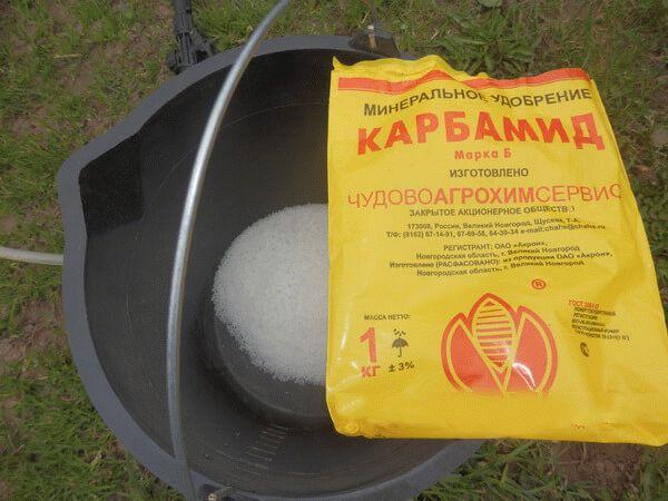 приготовление раствора мочевины
