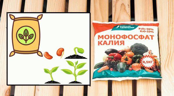 монофосфат калия для растений