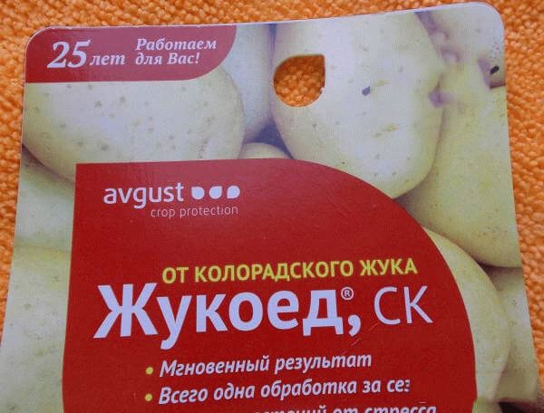 Жукоед