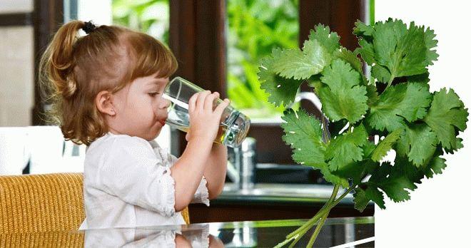Ребенок пьет отвар петрушки