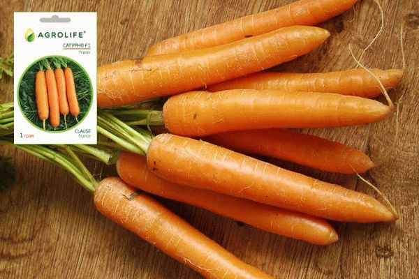 Морковь Сатурно