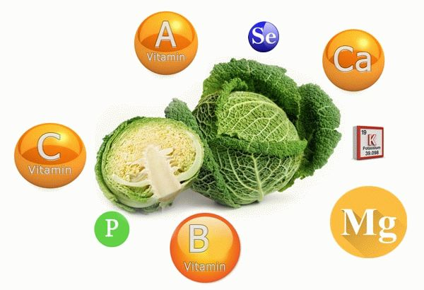 Витамины в составе савойской капусты