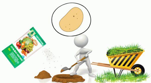 сульфат магния для картофеля