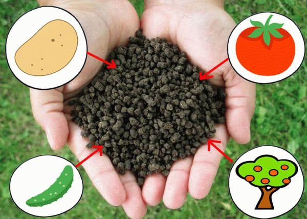 двойной суперфосфат и овощи