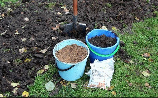 Удобрения для почвы в ведрах