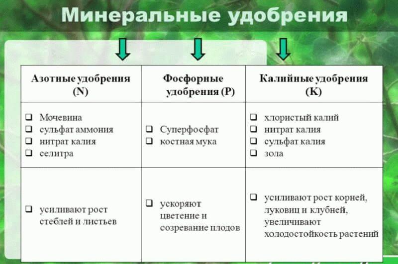 классификация минеральных удобрений