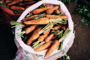 Способы хранения моркови