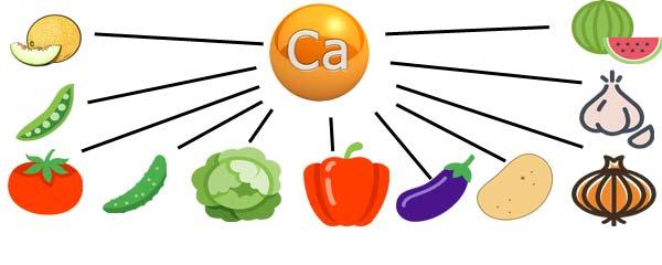 овощи и кальций