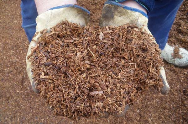 мульчирование почвы
