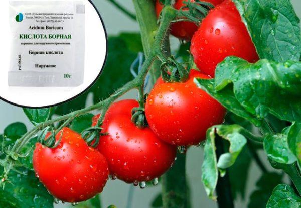борная кислота и помидоры