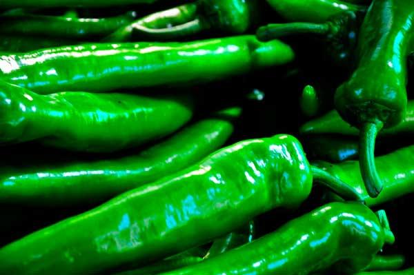 Перец чили зеленый сорта польза выращивание