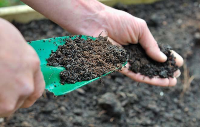 перегной для почвы