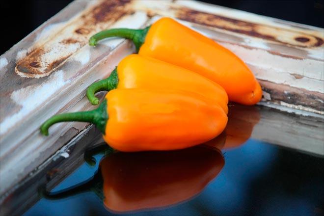 Халапеньо оранжевый