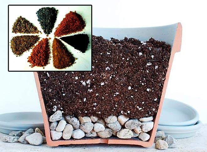 грунт для кактуса